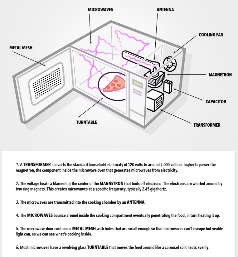 Parts of a Microwave